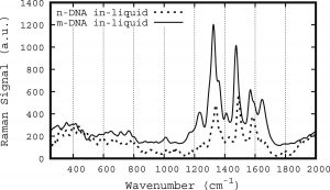 Raman spectra of native and methylated-cytosine DNA